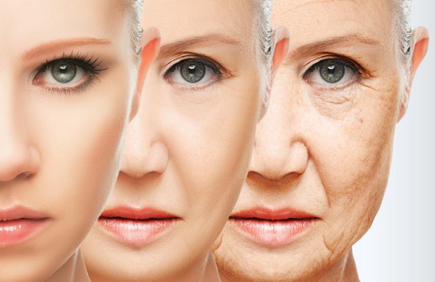 Die Veränderung der Haut mit zunehmenden Alter