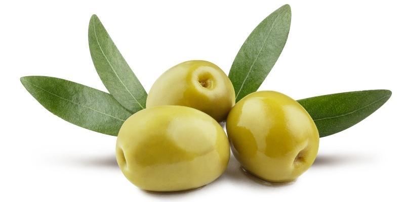 gruene-oliven-mit-blaettern